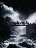 Pony Carts Crossing Bridge Over Waterfall and Rapids  Briksdal  Norway