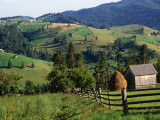 Rural Countryside  Sacele  Brasov  Romania 