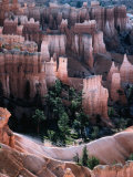 "Overhead of ""Hoodoo"" Limestone  Sandstone and Mudstone Formations  Bryce Canyon National Park"