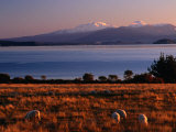 Lake Taupo in Tongariro National Park  New Zealand
