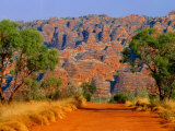Natural Rock Formations of Bungle Bungles and Dirt Road Leading to It  Purnululu NP  Australia