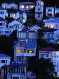 Houses on Hillside at Oriental Bay  Wellington  Wellington  New Zealand