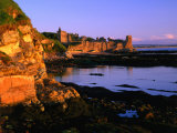 Ruins of St Andrews Castle at Dawn  St Andrews  United Kingdom