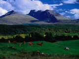 Ben Nevis and Pastoral Lands Near Gairloch  Scotland