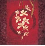 Orchid Harmony
