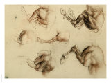 Study of Running Horses  Drawing  Royal Library  Windsor