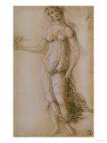 Study of Pallas  Gabinetto Dei Disegni E Delle Stampe  Uffizi Gallery  Florence