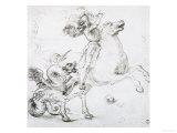St George and the Dragon  Drawing  Gabinetto Dei Disegni E Delle Stampe  Uffizi Gallery