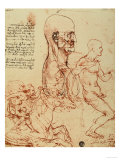 Study of the Human Features and a Knight  Galleries of the Academy  Venice