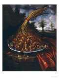 Still Life with Dates  Palatine Gallery  Florence