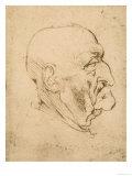 Profile of a Bald Man  Pen Drawing on White Yellowed Paper  Biblioteca Ambrosiana  Milan
