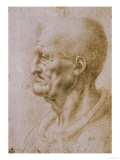 Head of a Man Seen in Profile