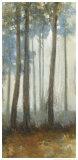 Silver Trees I