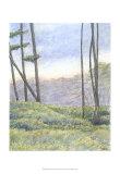 Tranquil Horizon II