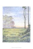 Tranquil Horizon I