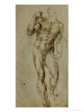 Nude Male Figure Seen Frontally  circa 1502-1506
