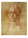 Female Idealized Head  1520-1530