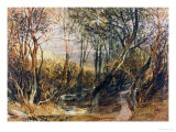 Woodland Scene  circa 1810  Watercolour on Paper