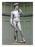 David: Frontal View