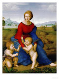 Madonna on the Meadow  1505 or 1506