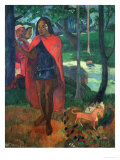 The Magician of Hiva Oa or the Marquisian Man with the Red Cape  1902