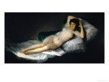 The Nude Maja  circa 1800