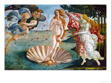 The Birth of Venus  1486