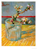 Blossoming Almond Branch in a Glass, c.1888 Giclée par Vincent Van Gogh