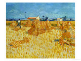 Harvest in Provence of Wheat Field with Sheaves  c1888