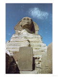 The Sphinx of Gizeh  in Its Paws is a Granite Stele Placed There by Pharaoh Thutmosis IV