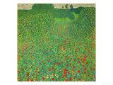 A Field of Poppies, 1907 Giclée par Gustav Klimt