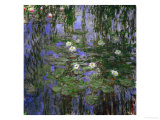 Blue Waterlilies  1916-1919