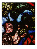 The Discovery of Wine  One of Noah&#39;s Sons Cutting a Grape  from the Noah Window  13th Century