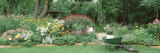 Mature Man Working in a Garden  Hinsdale  Illinois  USA