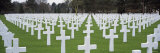 Rows of Tombstones in a Cemetery  American Cemetery  Normandy  France