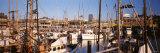 Fishermans Wharf  San Francisco  California  USA