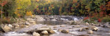 River Flowing through the Wilderness  White Mountains National Forest  New Hampshire  USA