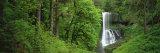 Silver Falls State Park  Oregon  USA