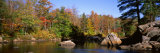 Deciduous Trees along Moose River  Adirondack Mountains  Adirondack State Park  New York  USA
