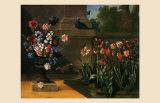 Vase de Fleurs et Parterre de Tulipes  1744