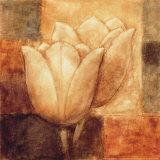Two Tulips II
