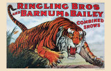 Ringling Bros and Barnum & Bailey