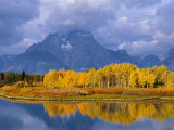 Mt  Moran and Snake River at Oxbow Bend  Grand Teton National Park  Wyoming  USA Autumn