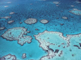 Aerial View of Great Barrier Reef  Queensland  Australia