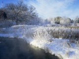 Scuppernong Creek in Winter Snow  Wisconsin  USA