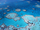 Aerial View of Hardy Reef  Great Barrier Reef and Sea  Queensland  Australia