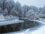 Nerussa River Beginning to Freeze  Bryansky Les Zapovednik  Russia