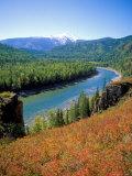 Autumn Colours and Katun River  Katunsky Zapovednik  Altai Mountains  Russia