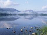 Dawn Over Loch Morlich  Cairngorms National Park  Scotland