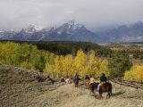 Tourists Enjoying Horseback Riding  Grand Teton National Park  Wyoming  USA